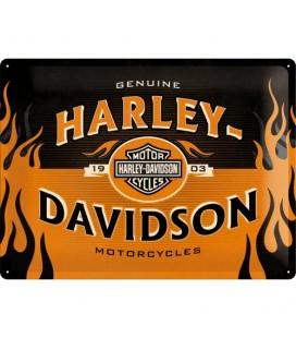 Szyld 30x40 Harley Flame