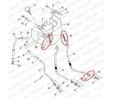 Spinka przewodów olejowych, FO-019