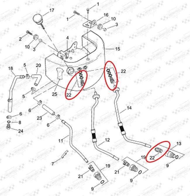 spinka przewod u00f3w olejowych  fo-019